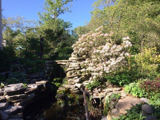27 Blake Street: Garden Fountain