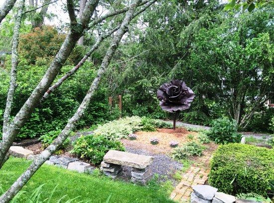 27 Blake Street: Back Garden