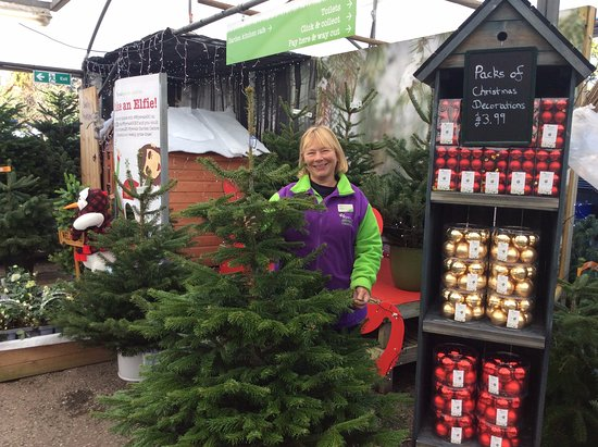 wyevale garden centre helen our longest serving colleague she is with us