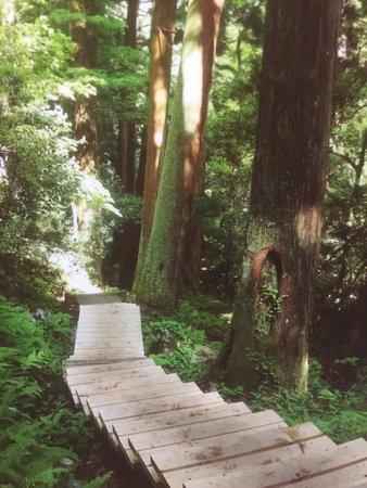 Unnan, Japón: photo3.jpg