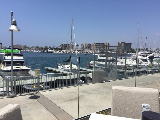 Marina del Rey, แคลิฟอร์เนีย: View from our lunch table outside at SALT