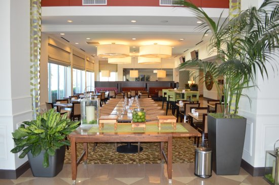 Hilton Garden Inn Houston Energy Corridor Updated 2017 Prices Hotel Reviews Tx Tripadvisor