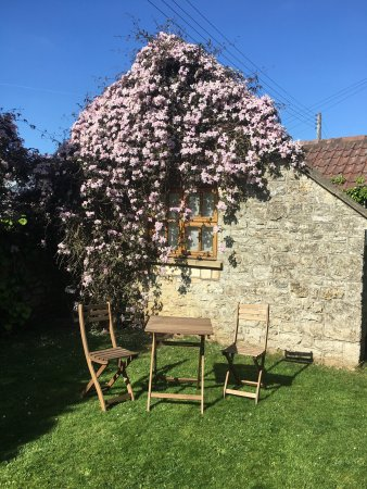 Dundry, UK: Greenditch Farm B&B