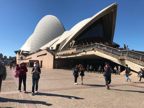 Viator Sydney Opera House Tour