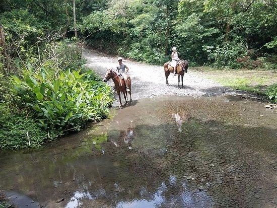 Playa Hermosa, Costa Rica: horseback riding