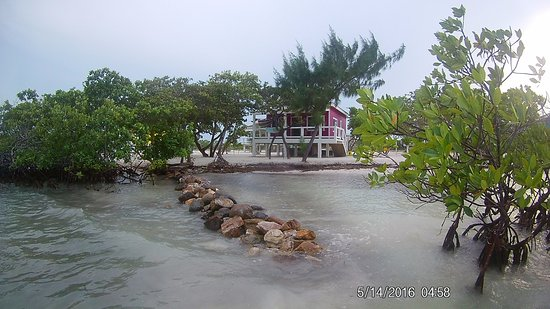 Coco Plum Island Resort: Walk right out of your cabana and go swimming