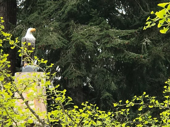 Greenbank, واشنطن: Loved the eagle keeping watch by the entrance