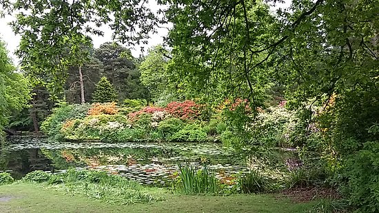 Knutsford, UK: 20170519_115236_large.jpg