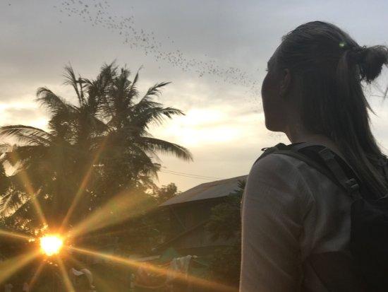 Battambang, Kambodża: photo4.jpg