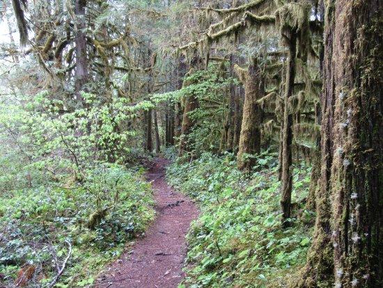 Eugene, OR: Trail