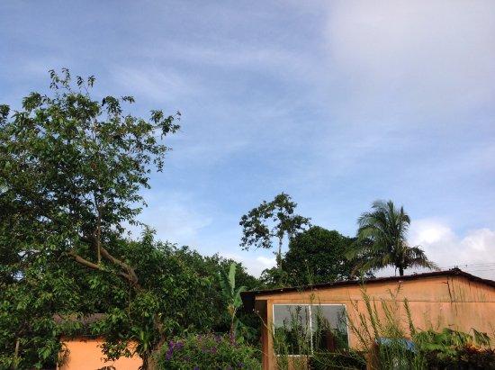 Cabinas Los Guayabos: 05.2017