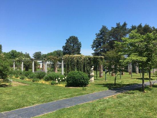 Chatham Manor: photo0.jpg