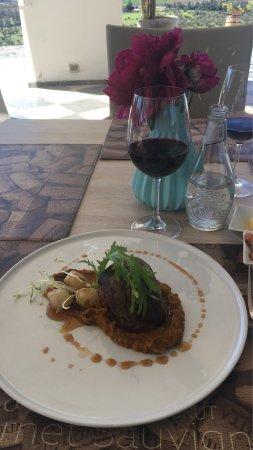 Restaurant De Viña Indómita: Almoço na Viña Indomita, excelente!