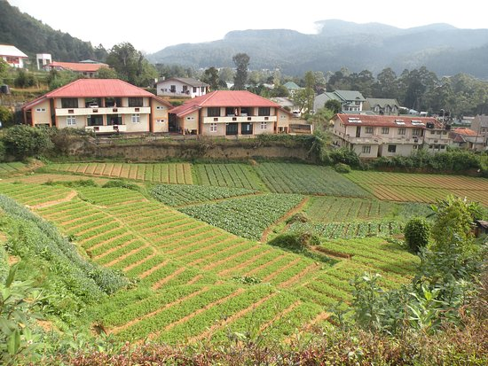 nuwara eliya divorced singles personals Continue to nuwara eliya, visiting the ramboda waterfalls and a tea factory along the way afternoon the old colonial outpost still referred to as 'little england' nuwara.