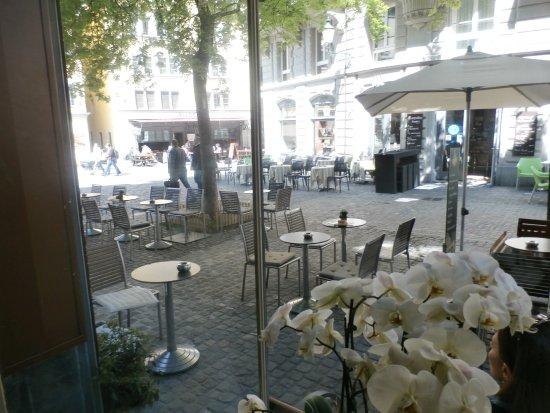 Cafe Bar Colibri