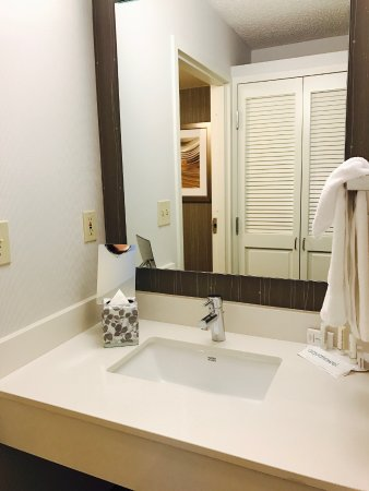 Courtyard Dallas DFW Airport North/Irving: Sink vanity and closet located outside shower/toilet room