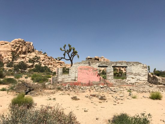 Joshua Tree, Califórnia: Awesome abandoned homestead in the wilderness
