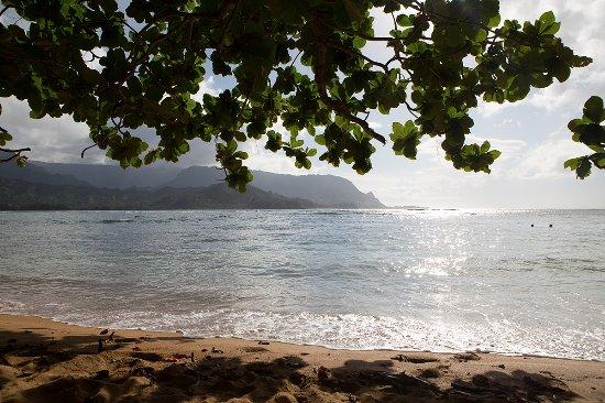 Hanalei Bay Resort Foto