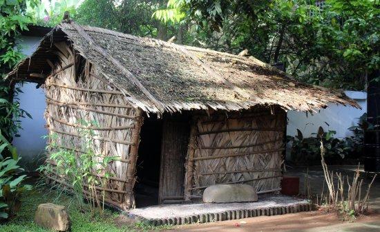 Musee Ethnographique des Peuples de la Foret
