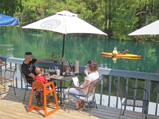 Swampy's Bar & Grille: A dog kayaking and a family dining