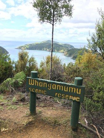 Rawhiti, New Zealand: Whangamumu Scenic Reserve