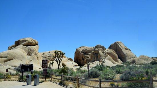 Twentynine Palms, CA: Lots of places to hike