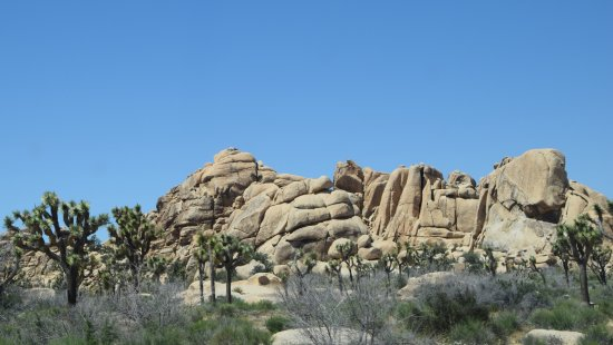 Twentynine Palms, CA: God's handiwork...