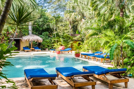 Hotel Pasatiempo: Beautiful tropical garden, like a little oasis in the middle of the town.