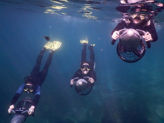 Sydney Underwater Scooter Tours