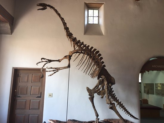 Museum of Northern Arizona: cannot recall what he was called