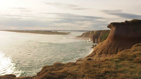 Invercargill, Selandia Baru: The Cliffs at Fortrose, Catlins, looking back towards the township.