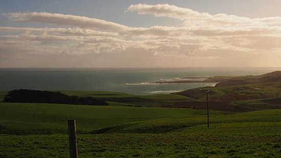 Invercargill, Nueva Zelanda: From the road into Slope Point, Catlins, looking towards Bluff.