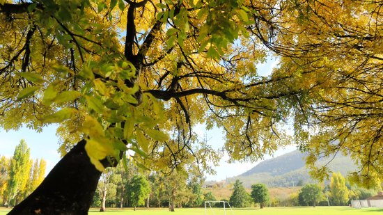 New Norfolk, Australia: Derwent valley walks 1