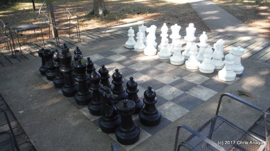 Montgomery, TX: Stand Up Chess!