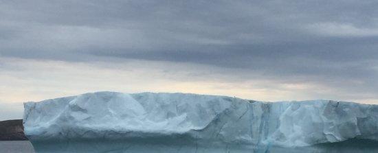 Bay Bulls, Καναδάς: Iceberg at Witless Bay