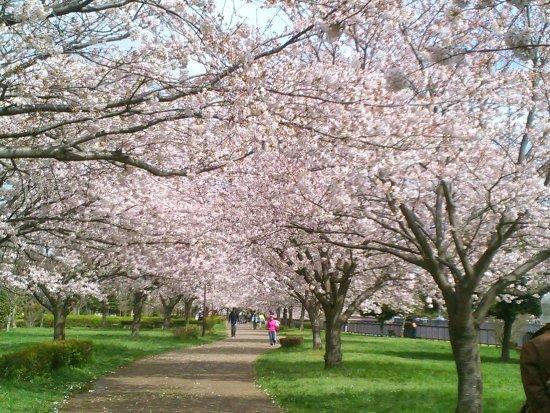 Hikichigawa Shinsui Park
