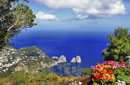Capri Island and Anacapri Full-Day...