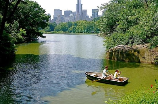 Private 2-Hour Central Park Walking...