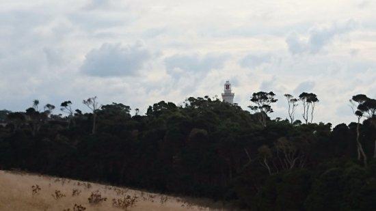 Wynyard, Australia: ウォーキングトラックからてっぺんが