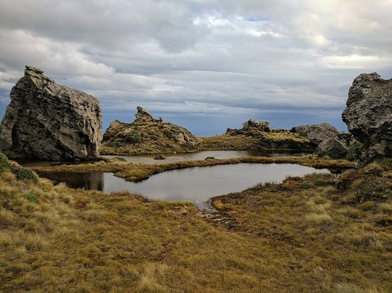 Tuatapere, Nouvelle-Zélande : Tarns above Okaka lodge