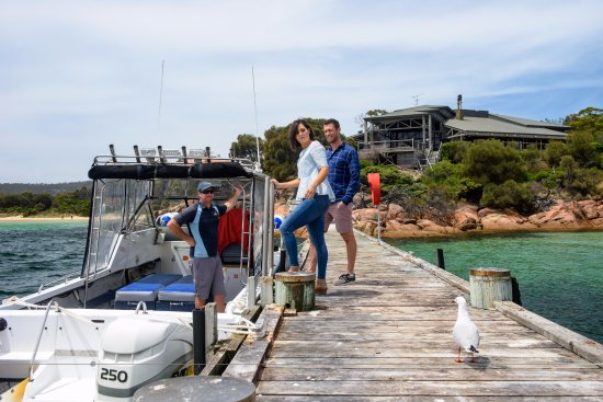 Coles Bay, Αυστραλία: We can also pick you up from Freycinet Lodge