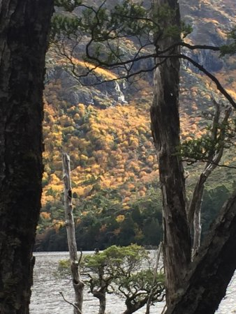 Cradle Mountain-Lake St. Clair National Park, Australien: photo4.jpg