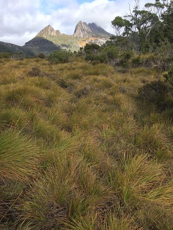 Cradle Mountain-Lake St. Clair National Park, Australien: photo5.jpg