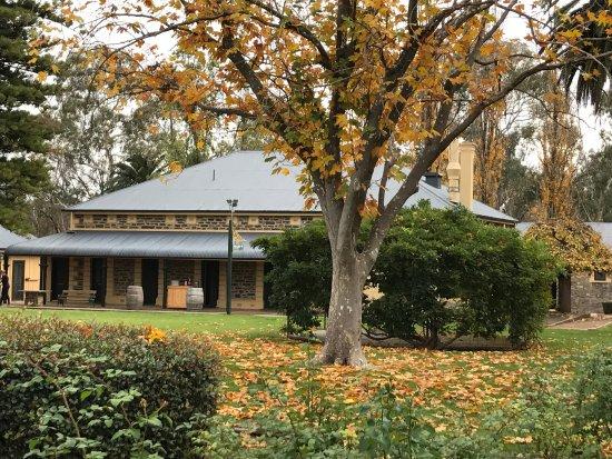 Seppeltsfield, Australia: photo1.jpg
