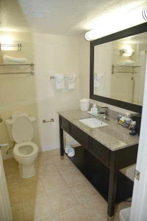 Mulberry, FL: Deluxe room Bathroom