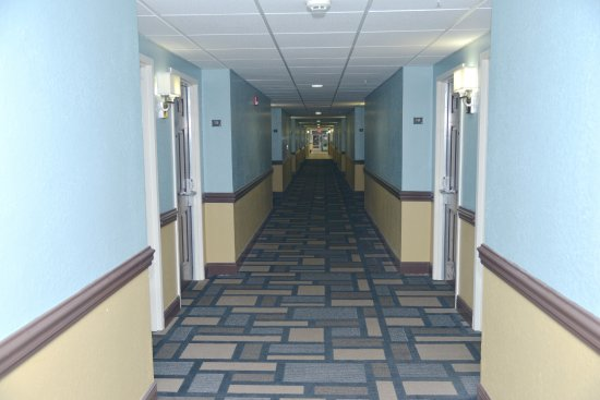 Mulberry, FL: first floor hallway