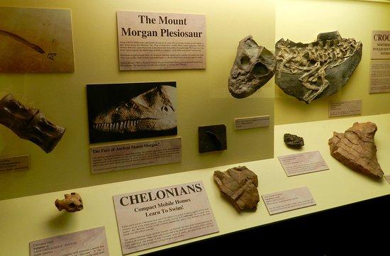 Rockhampton, Austrália: Mt Morgan dinosaurs