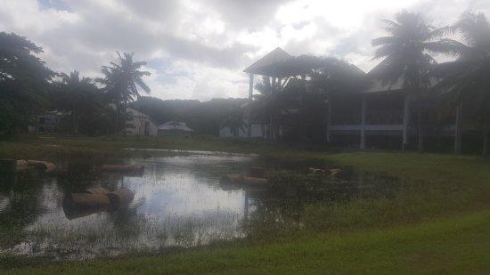 Muri, Islas Cook: 20170517_134019_large.jpg