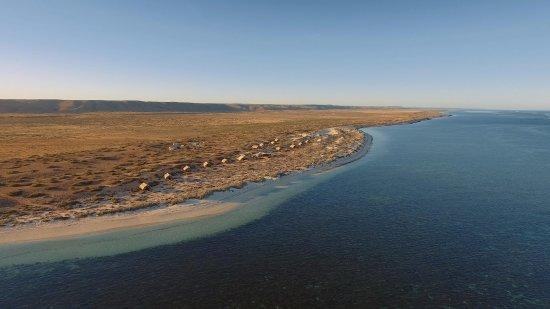 Sal Salis Ningaloo Reef: Sal Salis and the Ningaloo Reef from the air