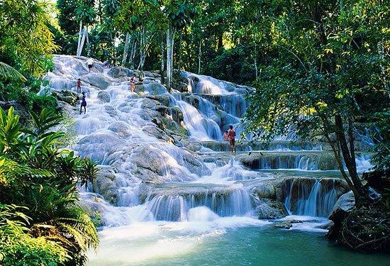 Paradise Palms Jamaica Tours: Dunns River Falls  paradisepalmsjamaicatransportation.rezgo.com